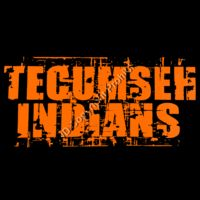 79 Tecumseh Indians Distressed Thumbnail